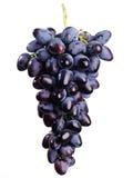 Druiven op een witte achtergrond. Stock Foto's