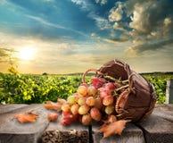 Druiven op lijst Stock Afbeeldingen