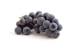 Druiven op witte backgound Royalty-vrije Stock Afbeeldingen