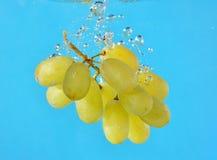 Druiven in water stock afbeeldingen