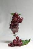 Druiven in wijnglas Royalty-vrije Stock Foto's