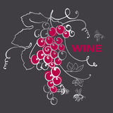 Druivenbos voor wijnetiket Stock Foto's