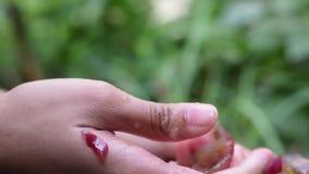 Druivenvruchten huiswijn die het grondige drukken van fruit met jonge vrouwelijke duim en wijsvinger verwerken stock videobeelden