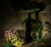 Druivenwijn Stock Fotografie