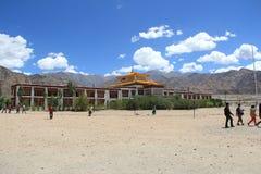 Druk vita Lotus School (Ladakh) Royaltyfri Fotografi