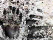 Drukken van handen op beton Omhoog geschoten Handprint dicht royalty-vrije stock foto's