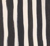 Drukuje zebry, wielki projekt dla jaka? zamierza zdjęcie stock