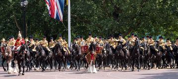 Drum horse with rider, with Household Cavalry behind, taking part in the Trooping the Colour military ceremony, London UK. London UK. Beautiful drum horse with stock image