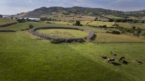 Drumena stenfort Castlewellan län ner Nordligt - Irland royaltyfri bild