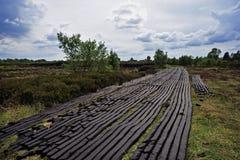 drumlish boglands ближайше Стоковая Фотография