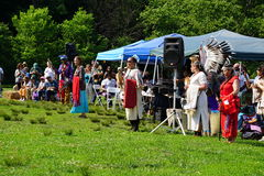 Drums Along The Hudson 2015 35 Stock Photo