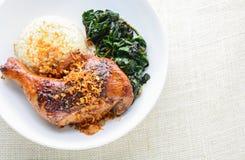 Drumstick цыпленка marinated с пряными соусом и травами чилей стоковые изображения