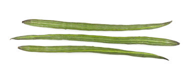 Drumstick Vegetable or Moringa Royalty Free Stock Images