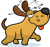 Drunk Cartoon Dog. A cartoon illustration of a dog looking drunk Royalty Free Stock Images