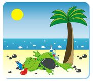 Drunk frog on the beach. Vector illustration of drunk frog with the ball on the beach Stock Photo