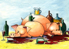 Drunk and happy pigs. Two drunk and happy pigs lie on the floor Stock Images