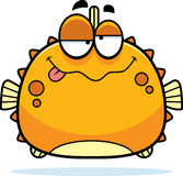 Drunk Little Blowfish Stock Images