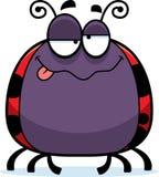 Drunk Little Ladybug Stock Photography