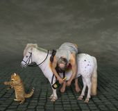 Drunk man on a pony and his cat royalty free stock image
