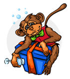 Drunk monkey with gift Royalty Free Stock Image