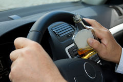 Drunken driver. Driver with a bottle of alcohol sits behind the steering wheel Stock Photography