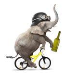 Drunken elephant. Stock Photos