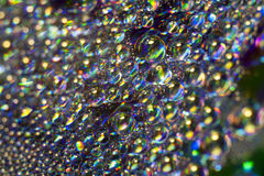 Druppeltjes op CD Stock Afbeelding