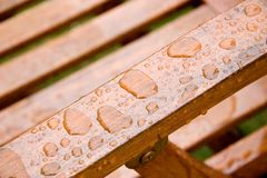 Druppeltjes van Regen Stock Fotografie