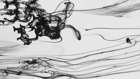 Druppeltjes zwarte verf in water op een witte achtergrond stock videobeelden