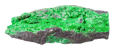 Druse of uvarovite crystals on rock isolated Stock Image