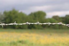 drut kolczasty Zdjęcie Stock