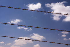 Drut kolczasty Zdjęcie Royalty Free