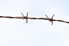 Drut kolczasty jako ochrona przeciw nieupoważnionemu wejściu w intymnego terytorium Fotografia Stock
