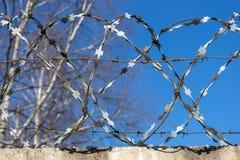 Drut kolczasty przeciw niebieskiemu niebu zdjęcie royalty free