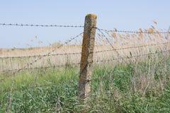 Drut kolczasty rozciągający na betonowych filarach Fotografia Stock