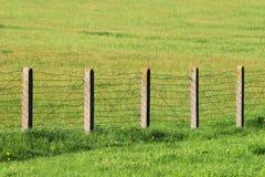 Drutu kolczastego ogrodzenie na zielonej trawie Obrazy Stock