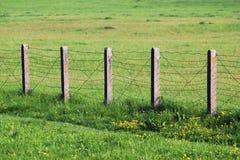 Drutu kolczastego ogrodzenie na zielonej trawie Fotografia Royalty Free