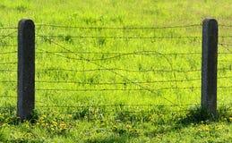 Drutu kolczastego ogrodzenie na zielonej trawie Zdjęcie Stock