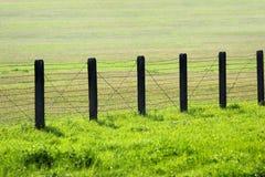 Drutu kolczastego ogrodzenie na zielonej trawie Zdjęcia Royalty Free