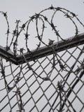 Drutu kolczastego ogrodzenie ochronne, staczający się drut Fotografia Royalty Free