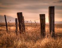 Drutu Kolczastego ogrodzenie w wsi Zdjęcie Royalty Free