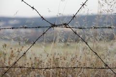 Drutu kolczastego ogrodzenie z zamazanym krajobrazowym widokiem Zdjęcia Royalty Free