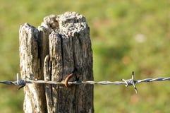 Drutu kolczasty ogrodzenie Zdjęcie Stock