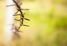 Drutu kolczasty up zamknięty Zdjęcia Royalty Free