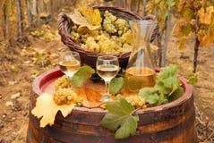 Druva och vitt vin royaltyfri foto