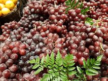 Druvafruktmagasin i förberedelsen för de många kunderna väljer att beskåda på marknaden Royaltyfri Fotografi