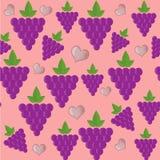 Druvafruktvektor Royaltyfria Bilder