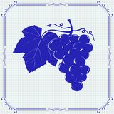 Druvor Den tecknade handen skissar blå illustration royaltyfri illustrationer