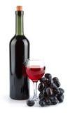druvor för flaskexponeringsglas isolerade rött vin Royaltyfri Fotografi