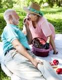 druvor har picknick den romatic pensionären arkivbild